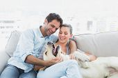 Happy couple petting their yellow labrador on the couch at home in the living room