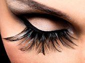Beautiful Eye Makeup with long false eyelashes. Holiday visage