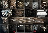 Organized Nails, Bolts And Screws