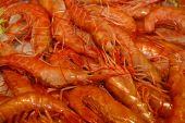 Close Up Crabs On Venetian Fish Market, Italy