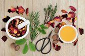 Love potion ingredients of herb leaf sprigs and rose flower over oak wood  background.