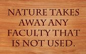 Nature takes away any faculty that is not used - on wooden red oak background