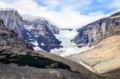 Landscape View Of Columbia Glacier In Jasper Np, Canadian Rockies