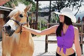 Picture of photo of the young woman taking care of her horse.
