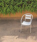 Stainless Steel Chair In A Garden