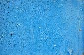 Blue Old Paint