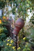 Pot On The Fence