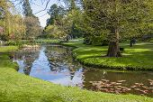 Beautiful Lake In The National Botanic Gardens In Dublin