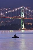 Girl In Wet Suit Statue And Lions Gate Bridge