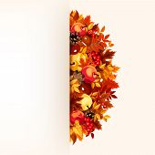 Card with autumn leaves. Vector eps-10.leaves_background