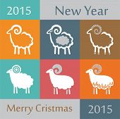 Set Of Decorative Sheep In Different Bright Backgrounds