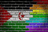 Dark Brick Wall - Lgbt Rights - Western Sahara