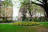 Spring in Paris