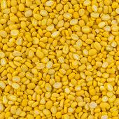 Texture Of Soya Beans