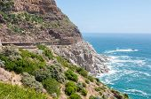 picture of fynbos  - View of Chapmans Peak drive in the Table Mountain National Park in Cape Town South Africa - JPG