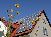 Solar cells on a roof with flowers