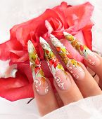 pic of nail-design  - Female hand with manicure  and beautiful design on  nails - JPG