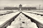stock photo of deportation  - The Auschwitz-Birkenau State Museum in the state of Polland