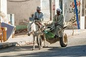 Egyptian men ride his donkey chariot