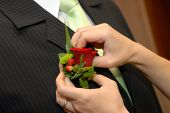 foto of boutonniere  - Wedding boutonniere placed on jacket of groom - JPG