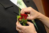 pic of debonair  - Wedding boutonniere placed on jacket of groom - JPG
