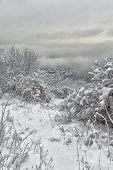 image of snowy hill  - Snowy city view to the Northern Italy hill - JPG