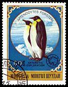 Vintage  Postage Stamp.  Emperor Penguins.