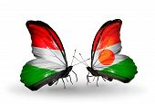 Two Butterflies With Flags On Wings As Symbol Of Relations Hungary And Niger