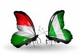 foto of nigeria  - Two butterflies with flags on wings as symbol of relations Hungary and Nigeria - JPG
