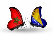 Two Butterflies With Flags On Wings As Symbol Of Relations Morocco And Bosnia And Herzegovina