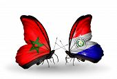 Two Butterflies With Flags On Wings As Symbol Of Relations Morocco And Paraguay