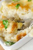 Cauliflower Cheese Serving With Fork
