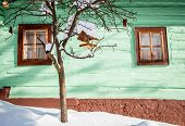 picture of chalet  - Bird house on the tree in front of chalet - JPG