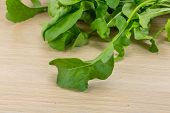 Rucola Leaves