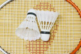 picture of game-cock  - equipment badminton Shutter Cock on a brown background, ** Note: Soft Focus at 100%, best at smaller sizes - JPG