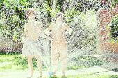 image of fountain grass  - Happy kids playing and splashing with water sprinkler on summer grass yard - JPG