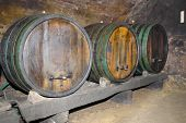 Wine Cellar With Wine Casks