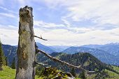 foto of bavaria  - Trunkon the mountain Breitenstein in the Alps in Bavaria Germany with free space in sky - JPG