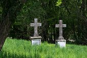 picture of tombstone  - two ancient stone crosses as tombstones in the high grass against dark bushes on an overgrown cemetery