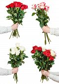 stock photo of bunch roses  - set of big bunches of various rose flowers in male hands isolated on white background - JPG