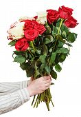 picture of bunch roses  - two hands giving bunch of various roses isolated on white background - JPG