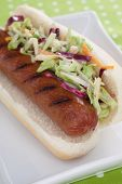 Hot Dog With Coleslaw