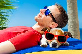 stock photo of sunbathers  - jack russell dog and owner sunbathing a having a siesta under a palm tree on summer vacation holidays at the beach - JPG