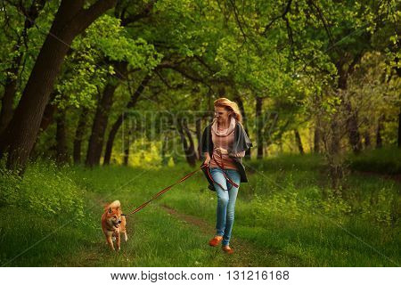 poster of Girl and dog Shiba Inu run in the Spring Park. Walking with a pet. Pedigree dog. Walking dogs.