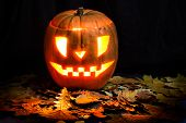 picture of jack-o-lantern  - Halloween background - JPG