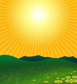 De hete zomer In groene landschap