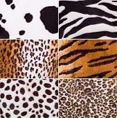 Animal skin fabric textures