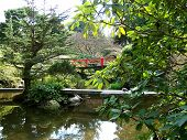 Asian Garden Bridges