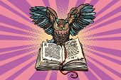 Owl On An Old Book, A Symbol Of Wisdom And Knowledge. Comic Book Cartoon Pop Art Retro Vector Illust poster