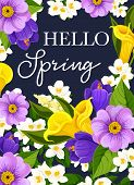 Hello Spring Greeting Card Of Springtime Wishes And Floral Bunch For Seasonal Holidays. Vector Sprin poster